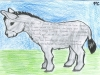 Platero Full Small_Page_03